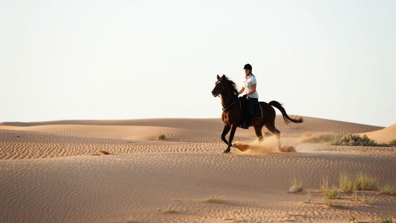 مراكز تدريب ركوب الخيل في دبي